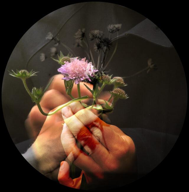 4_Efrat_Foighel-Brutman_Flower_New